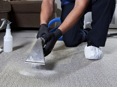 5 Tips on Choosing the Best Carpet Cleaning Service_