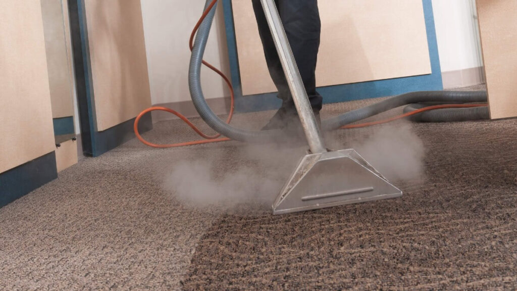 What Is Carpet Steam Cleaning