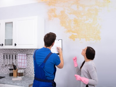 What To Expect From Professional Odor Removal Services